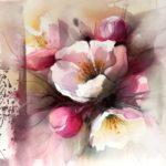 Rosa appelblom 1